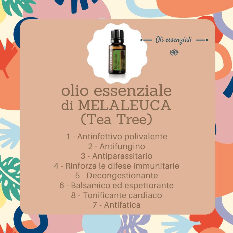 olio essenziale di melaleuca (tea tree) - proprietà benefiche